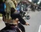 Kocak! Pengantin Wanita Naik Sepeda Motor Jemput Pengantin Pria yang Ketiduran di Hari Pernikahan